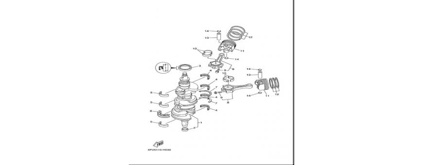 Albero motore e pistone F250A-FL250A